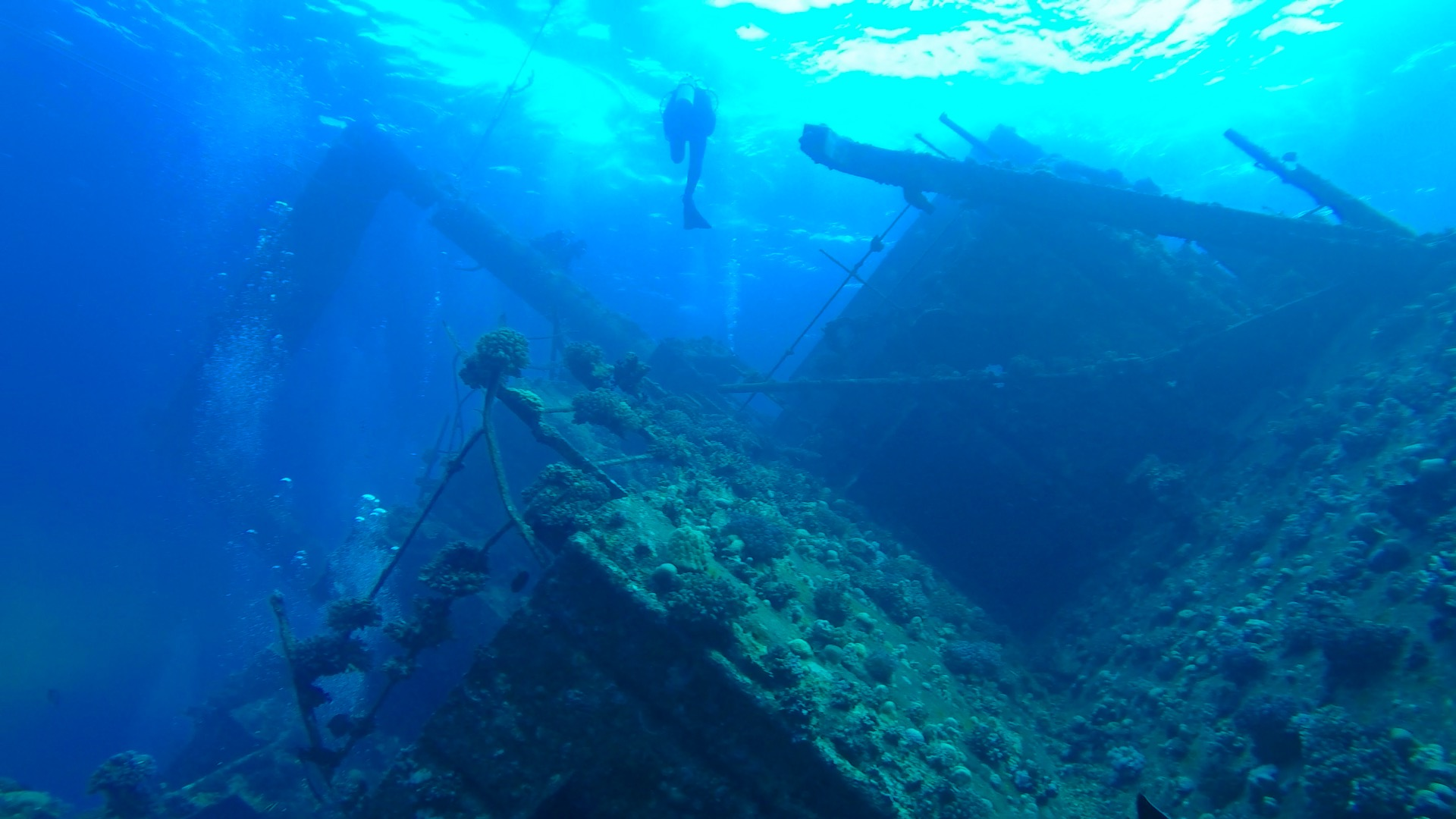7 Days Sailing And Diving The Red Sea 10