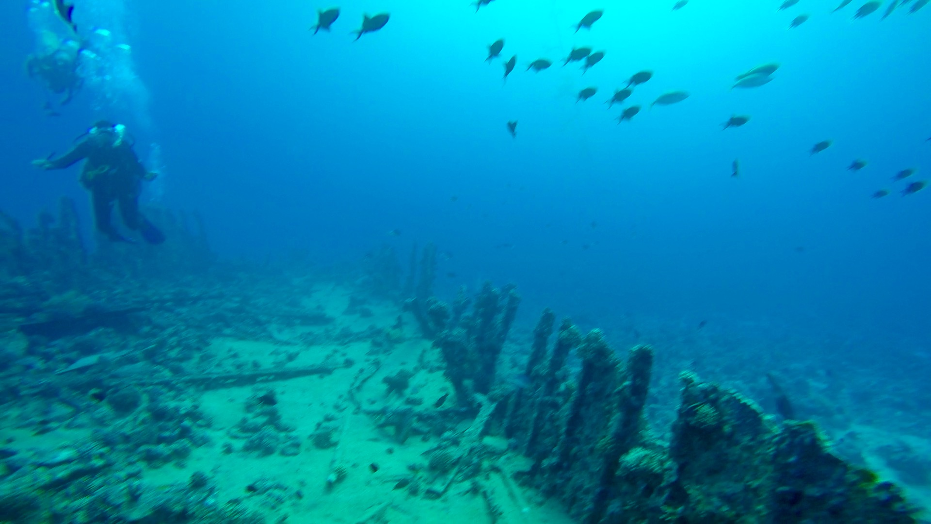 7 Days Sailing And Diving The Red Sea 9 - The Barge