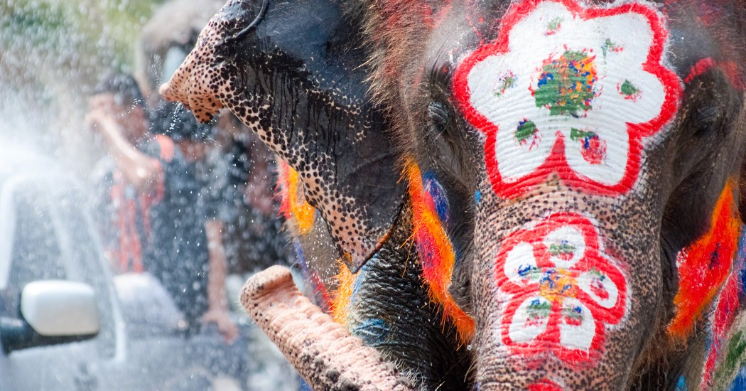 Multicultural Events - Songkran Festival - Chiang Mai, Thailand